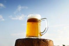 Tazza di birra sul cielo Fotografie Stock Libere da Diritti