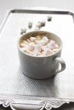Tazza di cacao con la caramella gommosa e molle delle caramelle gommosa e molle Immagini Stock Libere da Diritti