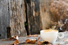 Tazza di caffè bianco Fotografia Stock Libera da Diritti