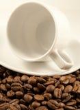 Tazza di caffè bianco sui semi di cacao torrefatti immagine stock libera da diritti
