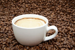 Tazza di caffè con crema su un fondo dei chicchi di caffè Immagini Stock