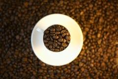 Tazza di caffè con i fagioli Fotografie Stock Libere da Diritti