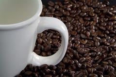 Tazza di caffè dei chicchi di caffè Fotografia Stock Libera da Diritti