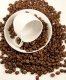 Tazza di caffè della Cina sui semi di cacao torrefatti fotografia stock libera da diritti