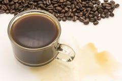 Tazza di caffè e chicchi di caffè Immagini Stock Libere da Diritti