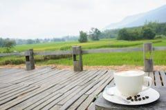Tazza di caffè fresco con i chicchi di caffè nel fondo del giardino Fotografie Stock