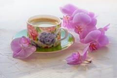Tazza di caffè di mattina Fotografia Stock Libera da Diritti