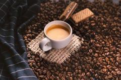 Tazza di caffè in mezzo ai chicchi di caffè con i biscotti e la tovaglia Prodotto granuloso Bevanda calda Fine in su Raccolta Nat fotografia stock libera da diritti