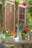 Tazza di caffè nel giardino del cortile Immagini Stock