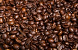 Tazza di caffè in pieno dei chicchi di caffè Primo piano Fotografie Stock