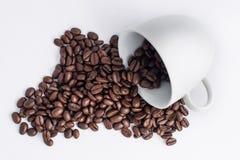 Tazza di caffè sistemata con i chicchi di caffè arrostiti freschi Immagini Stock Libere da Diritti