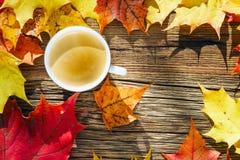 Tazza di caffè sui precedenti di legno con le foglie di autunno Fotografie Stock Libere da Diritti