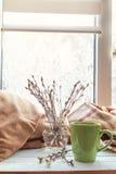 Tazza di caffè sul davanzale della finestra Fotografia Stock Libera da Diritti