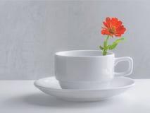 Tazza di caffè di natura morta Fotografia Stock Libera da Diritti