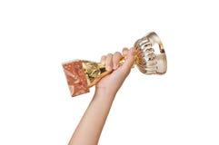 Tazza di campione della holding Immagini Stock