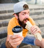 Tazza di carta della bevanda della tenuta del hot dog del morso dei pantaloni a vita bassa L'uomo barbuto gode del fondo delle sc immagini stock libere da diritti