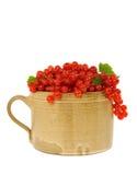 Tazza di ceramica piena delle bacche fresche del ribes. Fotografia Stock Libera da Diritti