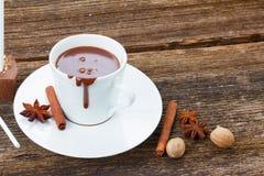 Tazza di cioccolato caldo Fotografie Stock Libere da Diritti
