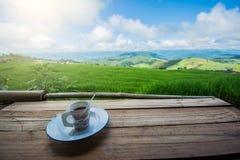 Tazza di coffe sul campo, terrazzo del riso Fotografie Stock Libere da Diritti
