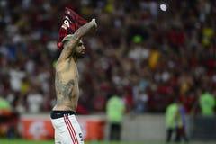 Libertadores Cup 2019