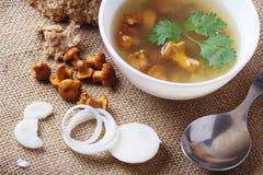 Tazza di minestra con i galletti Fotografia Stock Libera da Diritti