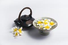 Tazza di plumeria di tè Fotografia Stock
