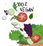 Tazza di Salade Immagine Stock
