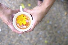 Tazza di tè calda disposta a disposizione Fotografie Stock
