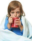 Tazza di tè caldo Fotografie Stock
