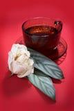 Tazza di tè con gli opuscoli Fotografie Stock Libere da Diritti