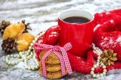Tazza di tè con i biscotti dell'avena all'aperto fotografia stock libera da diritti
