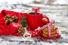 Tazza di tè con i biscotti dell'avena all'aperto nell'inverno fotografie stock libere da diritti