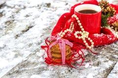 Tazza di tè con i biscotti dell'avena nella foresta di inverno fotografia stock libera da diritti