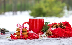 Tazza di tè con i biscotti dell'avena per adorabile nella foresta di inverno immagine stock libera da diritti