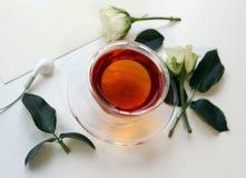 Tazza di tè con i germogli rosa su fondo bianco Immagine Stock