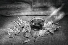 Tazza di tè con i kukies in bianco e nero Fotografia Stock Libera da Diritti