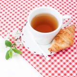 Tazza di tè con il croissant e un ramoscello dei fiori di ciliegia Fotografia Stock