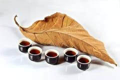 Tazza di tè con il foglio secco fotografia stock