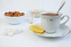 Tazza di tè con il limone, il miele ed i dadi Immagine Stock