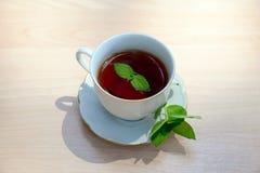 Tazza di tè con la menta Immagine Stock