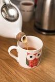 Tazza di tè con la teiera Fotografie Stock Libere da Diritti