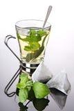 Tazza di tè con le bustine di tè della piramide e della menta fresca Fotografie Stock