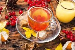 Tazza di tè con le foglie di autunno Fotografie Stock Libere da Diritti
