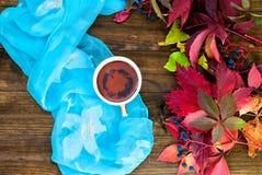Tazza di tè con le foglie di autunno dell'uva selvaggia Immagini Stock