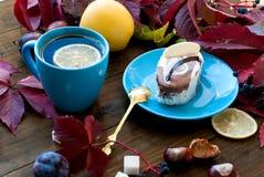 Tazza di tè con le foglie di autunno dell'uva selvaggia Fotografie Stock Libere da Diritti