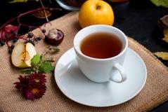 Tazza di tè con le foglie di autunno dell'uva selvaggia Immagine Stock