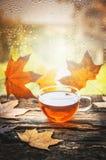 Tazza di tè con le foglie di autunno sul davanzale di legno della finestra, con il fondo della natura di autunno fotografie stock