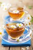 Tazza di tè di erbe con i fiori della camomilla Fotografie Stock Libere da Diritti