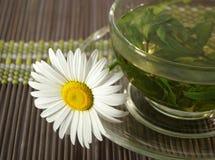 Tazza di tè di erbe e della camomilla Immagini Stock