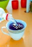 Tazza di tè e bottiglia con acqua Fotografia Stock